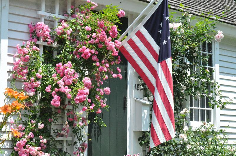 Flag-by-the-sea-garden