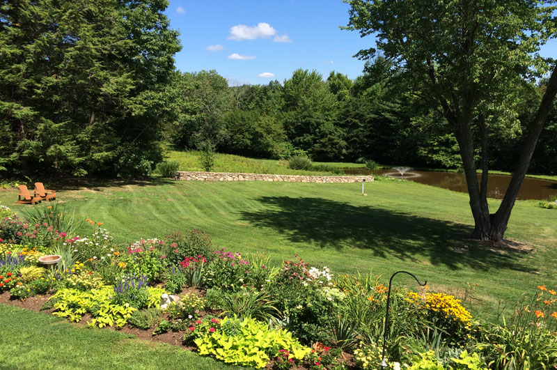 Summer--Garden-Westledge-(1