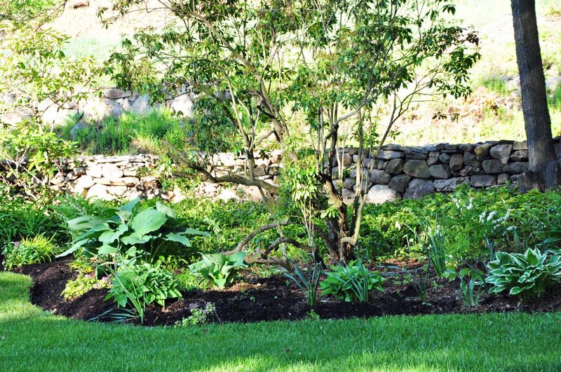 Spring-Gardens-Westledge-(3