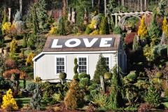 Avon CT Schrub LOVE House (6)