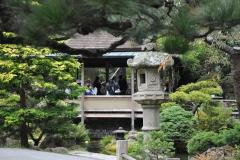Japanese Garden San Francisco (13)