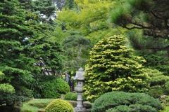 Japanese Garden San Francisco (14)