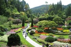 Japenses garden pathway