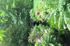 Private Gardens Avon CT (11)