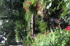 Private Gardens Avon CT (13)