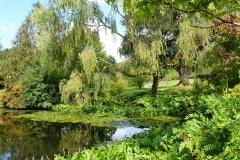 Water-garden-park