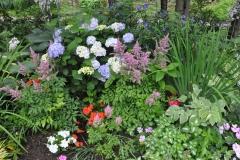 Shade-Garden-Summer