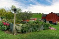 Veggie-Farm
