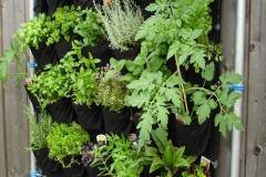 vegetable-garden-wall
