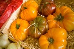 vegetable-gardening-tomatoe