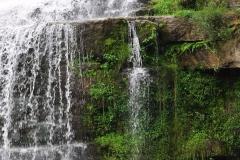 Chittenango-Falls-moss-wate