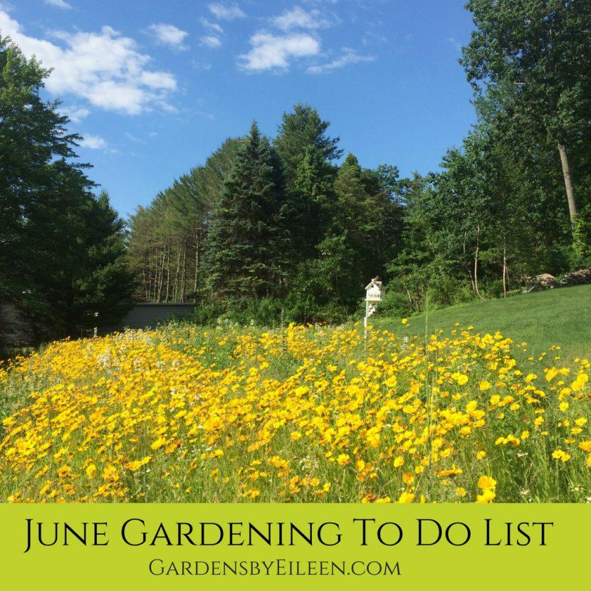 June Gardening To do List