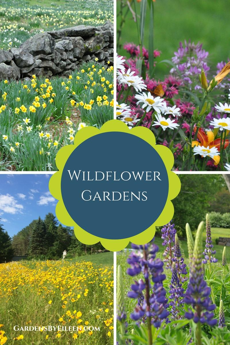 Wildflower Gardens. [Show Slideshow]