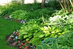 Shade-Garden-Hostas-curved-