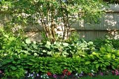 Shade-garden-Hosta-Impatien